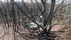 Baumhaus in der Heide