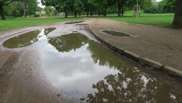 Überschwemmungsgebiet Alaunpark