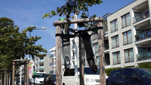 An der Tannenstraße wurden Roller in Bäume gehängt.