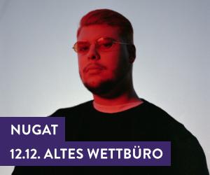 Die Neustadt durch den militärhistorischen Keil gesehen ...