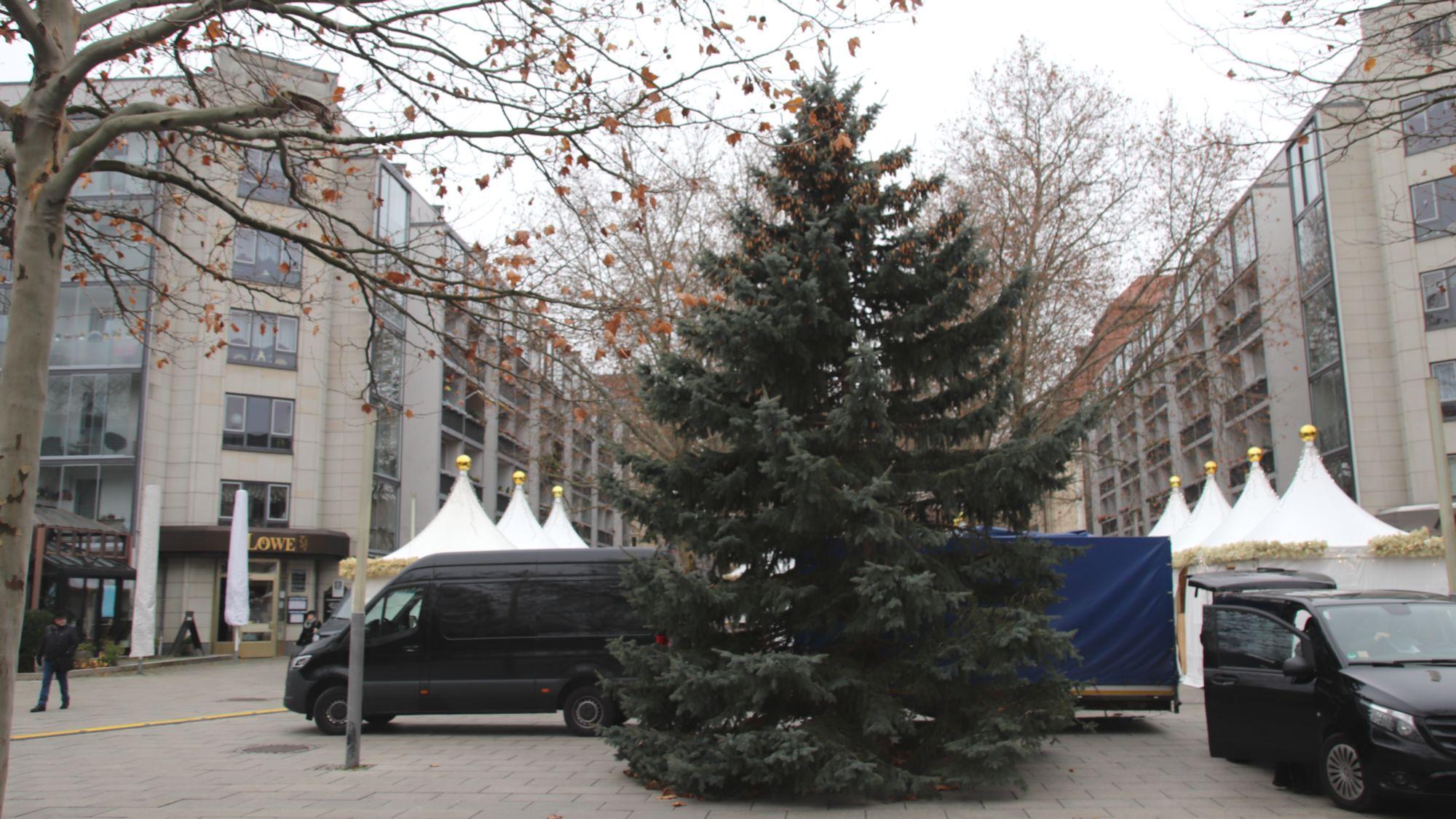 Kleiner Weihnachtsbaum am Augustusmarkt