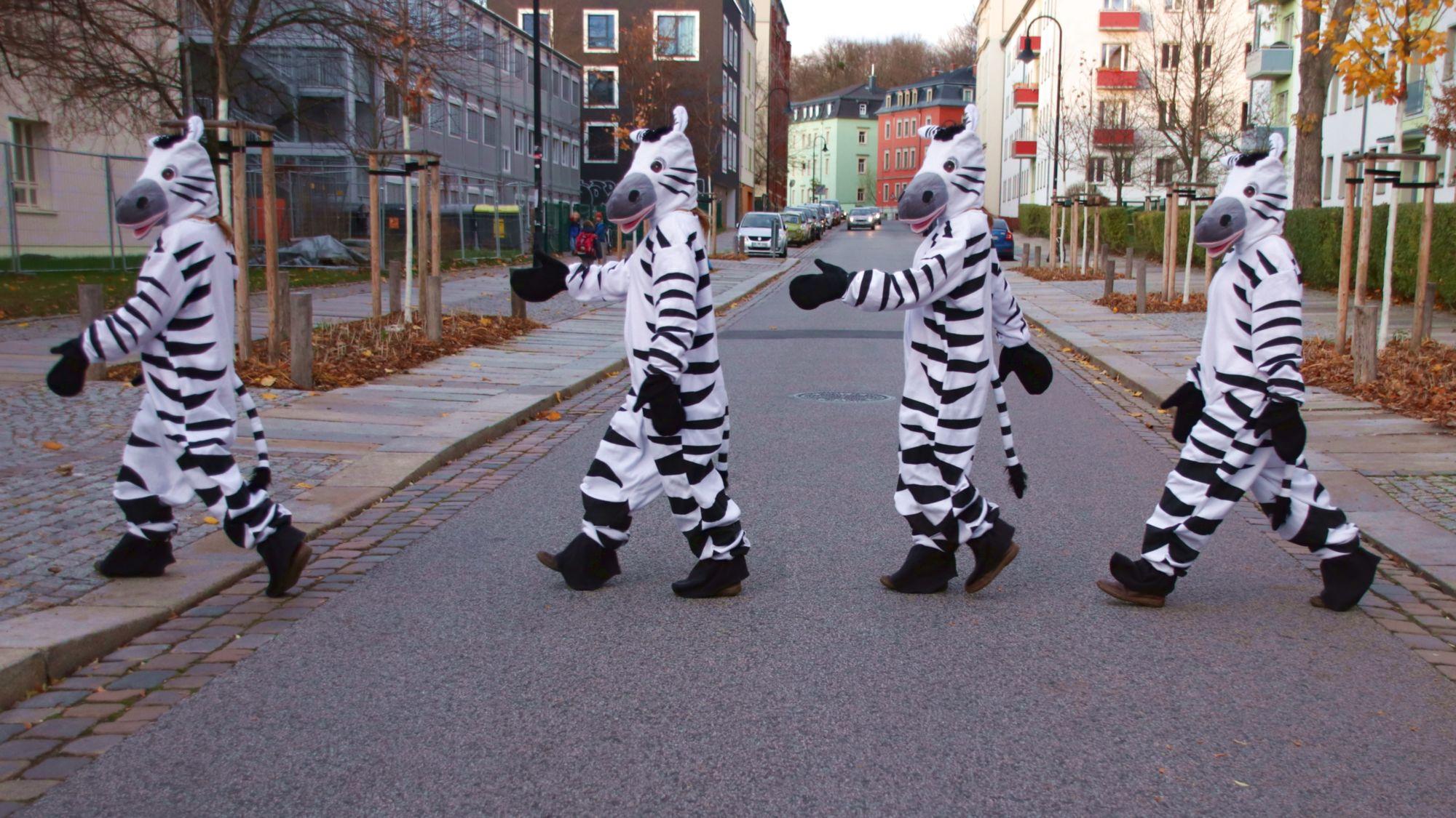 Zebrastreifen für das Hecht-Viertel gefordert - Fotomontage: Anton Launer