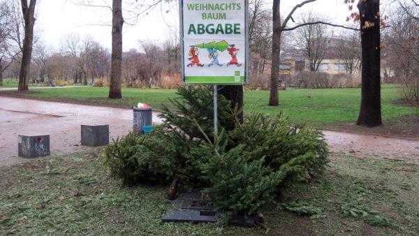 Weihnachtsbaumablagestelle am Alaunplatz