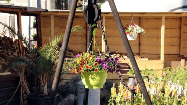 Statt Kesselgulasch hängt nun ne Blumenampel rum.