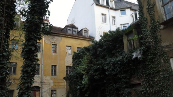 Rückseite des Vorderhauses und zugewachsener Seitenflügel - Foto: Archiv Anton Launer 2013