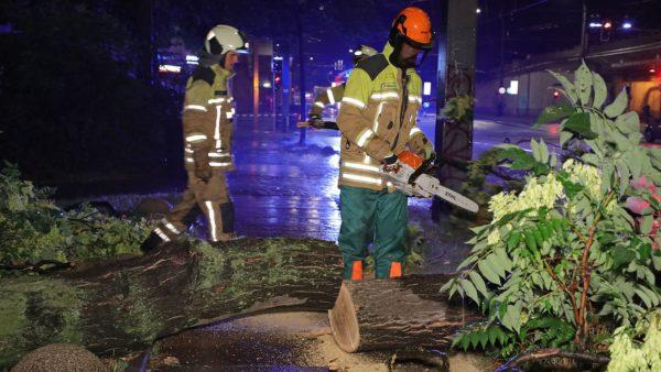 Die Feuerwehr sicherte die Abbruchstelle - Personen kamen nicht zu Schaden. Foto: Roland Halkasch