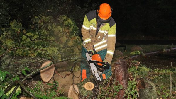 Ein Feuerwehrmann zerlegt den abgebrochenen Ast. Foto: Roland Halkasch