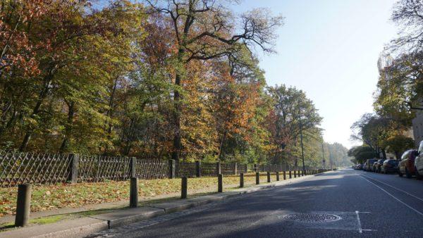 Hechtpark im Herbst