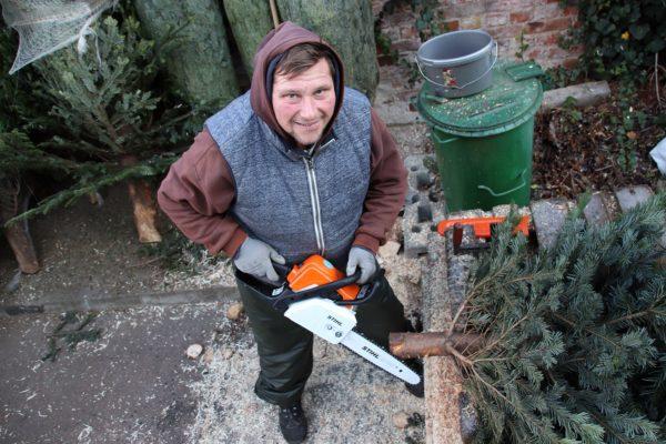 Hier wird jeder Baum passend gemacht.