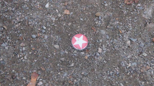 Sternhagel auf der Löbauer Straße. Nicht nur die Herrnhuter schimmern hier. Foto: Philine