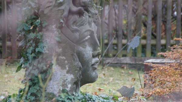 Ein mystischer Kopf durchbricht die schöne Grasnabe. Foto: Philine