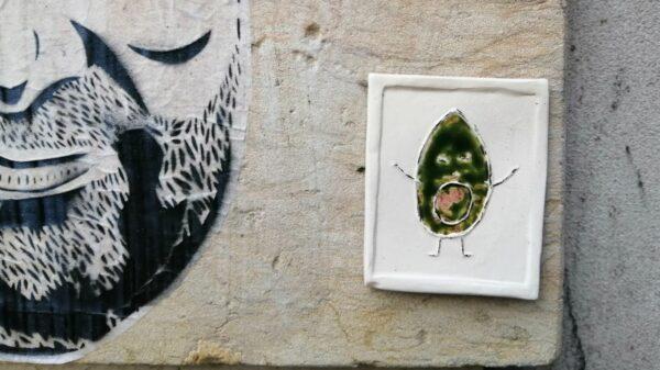 Kleine Avocado, großes O