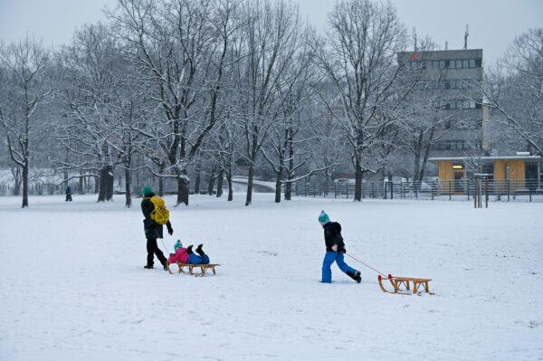 Ski und Rodel gut - heute morgen auf dem Alaunplatz. Foto: Anja Schneider
