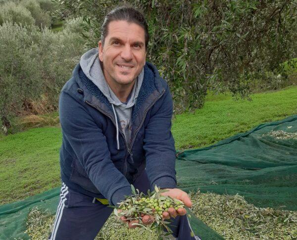 Theodoros Vichos bei der Olivenernte in seinem Heimatdorf Vorizia. Foto: privat