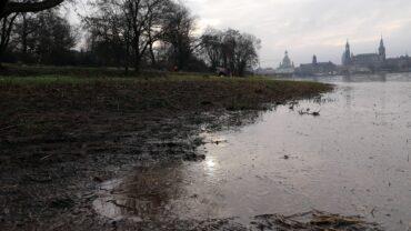 Steigende Pegel an der Elbe