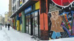 Neustadt-Bibliothek - Foto: Philine