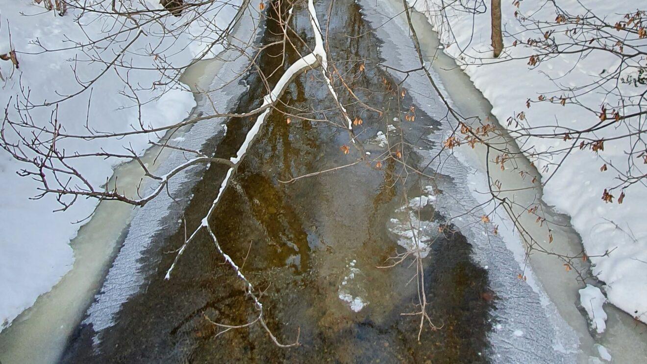 Brüchiges Eis an der Prießnitz