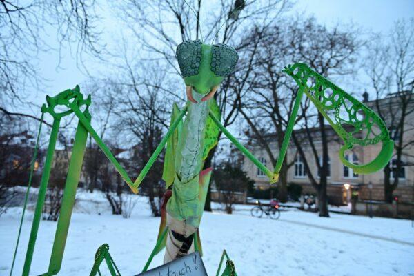 Guckt ganz schön freundlich, die riesige, grüne Heuschrecke vom Albertplatz - Foto: Anja Schneider