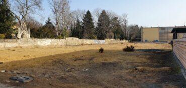 Im Hintergrund der Innere Neustädter Friedhof.