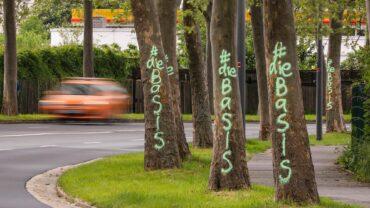 Unbekannte besprühen mehr als 20 Straßenbäume mit Farbe. Foto: TIno Plunert