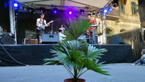 Mit Grünpflanze zum Konzert vom Goldnen Anker - Foto: Archiv Anton Launer 2012