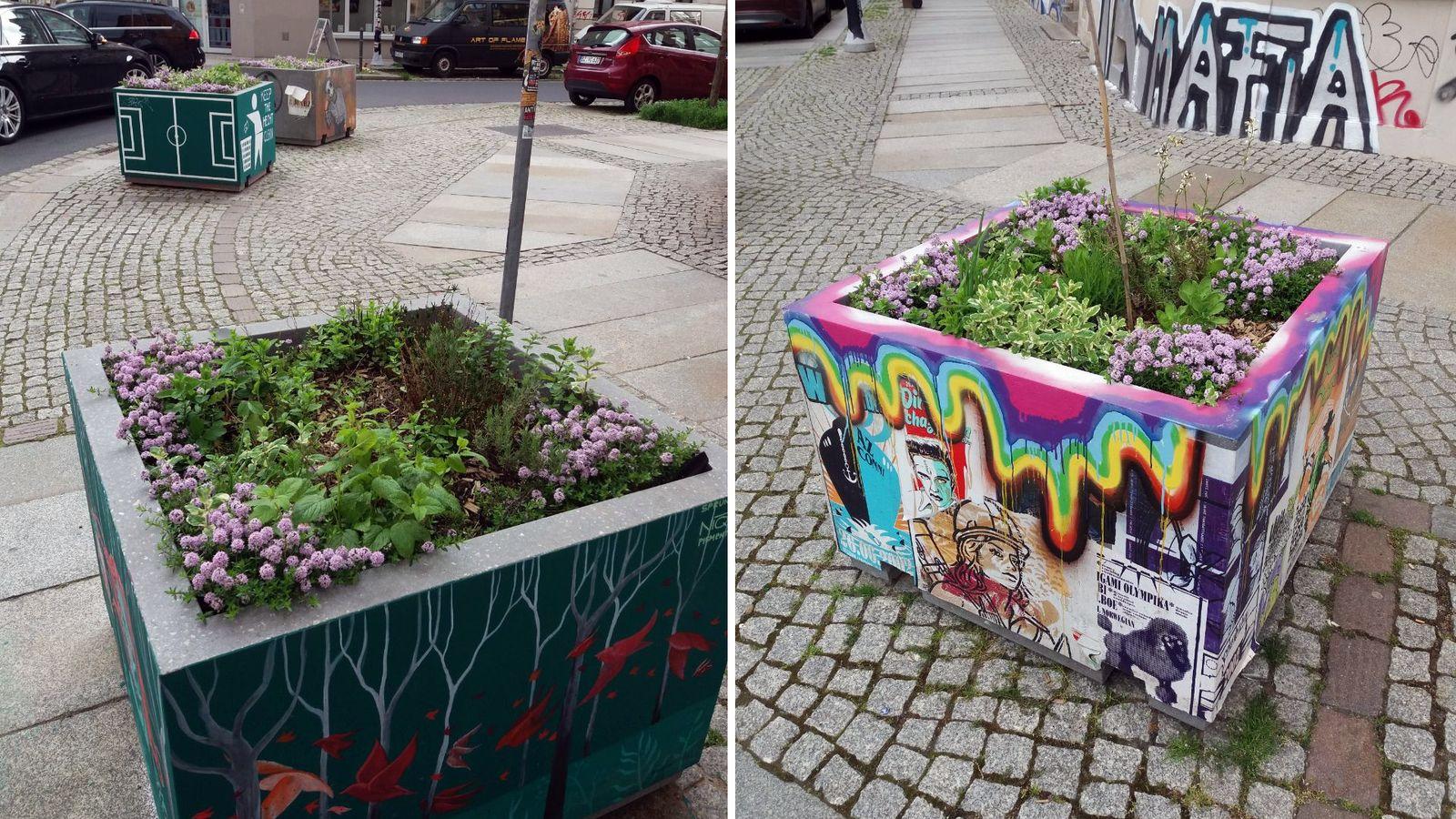Neu gestaltete und bepflanzte Hecht-Kübel. Foto: Stadtgärten e.V.
