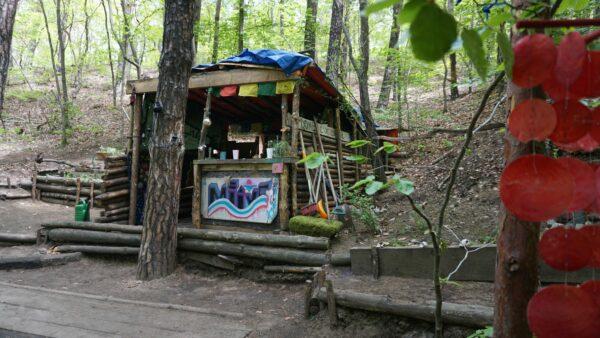 Bunte Hütte im Wald - Foto: Jonas Breitner