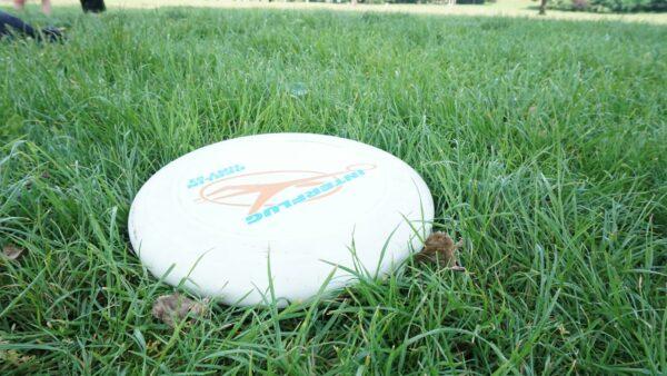 Eine Ultimate Frisbee-Scheibe - Foto: Jonas Breitner