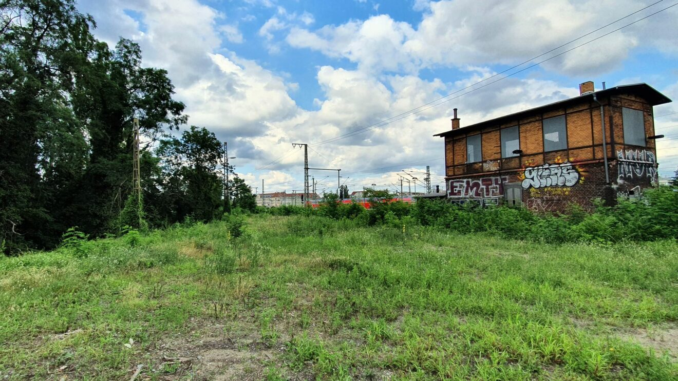 Hier soll die künftige Straße verlaufen, an ihrem rechten Rand sollen nach dem aktuellen Planungsstand neue Bäume gepflanzt werden.